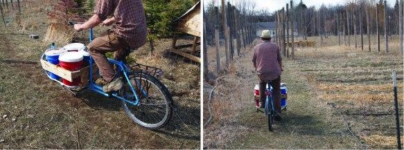 bike bucket brace