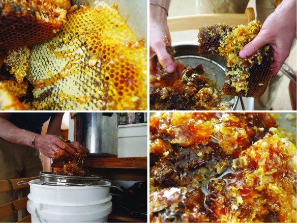crushing honeycomb