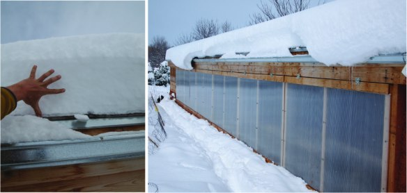 snow on greenhouse
