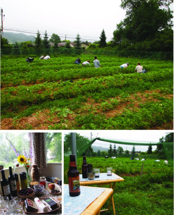 Weeding and wine - Thank you friends!