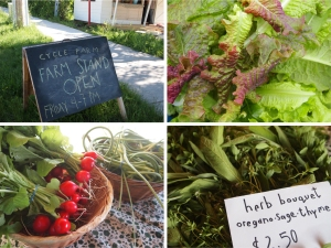 farm stand for website