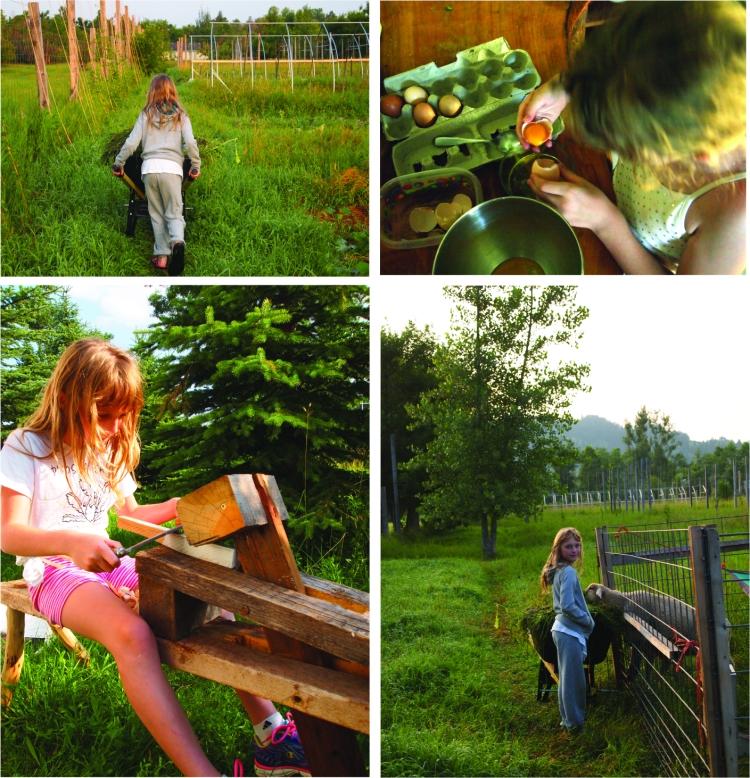 elora ann on the farm