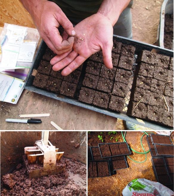 soilblocks