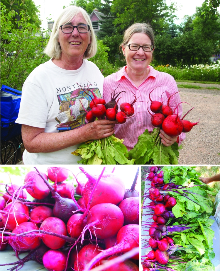 ann and randi beauties and the beets
